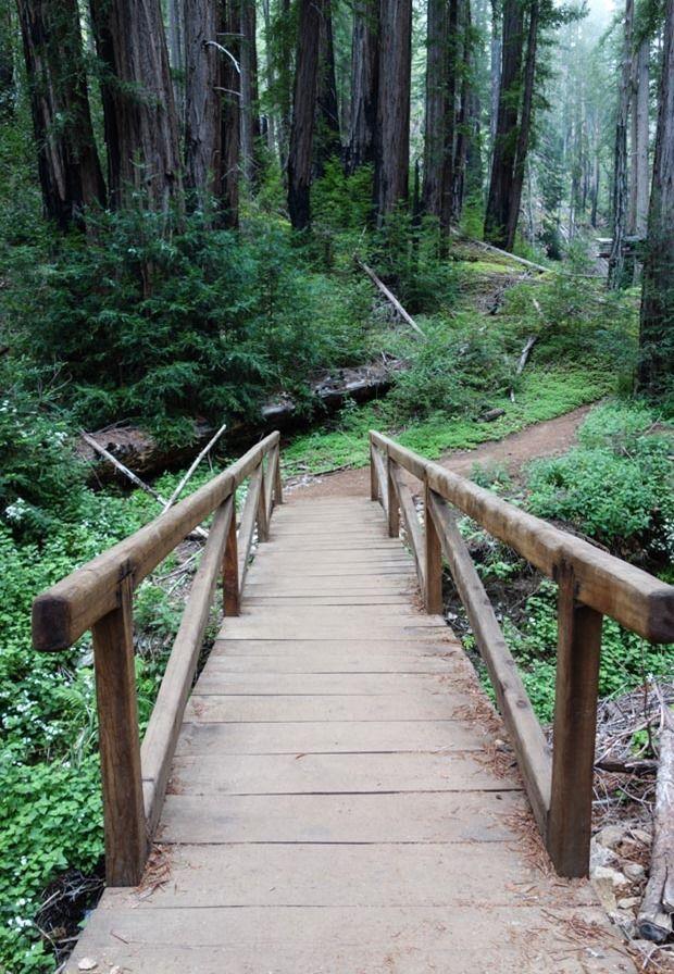 Ewoldsen Trail Big Sur