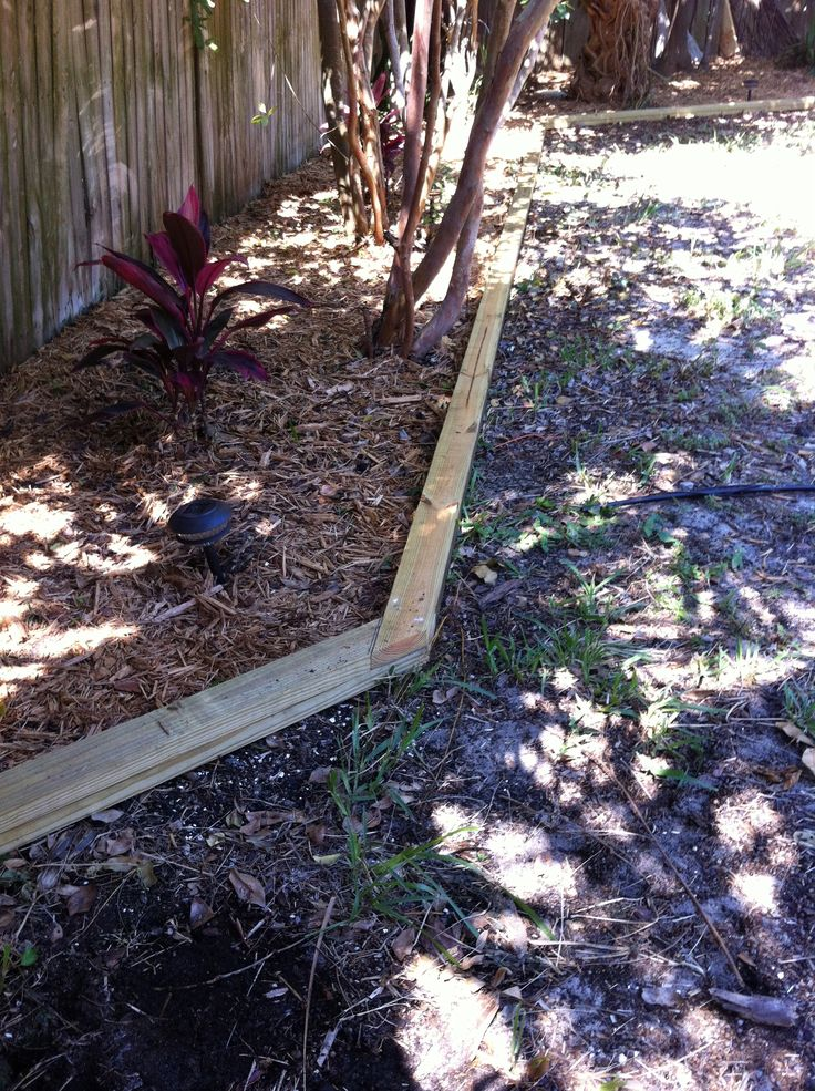 pressure treated 2 x 4 landscaping timber / edging