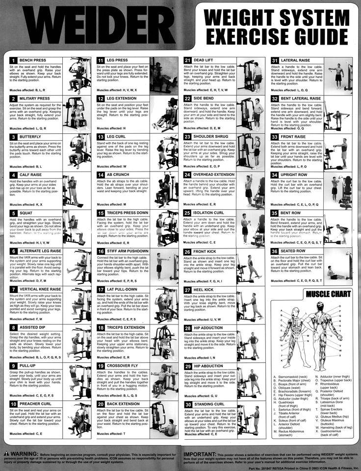 weider multi gym routines - Google Search
