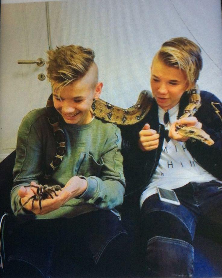 Alle hater spindler men ikke jeg plus vi har en slange