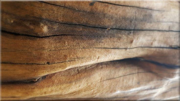 Homok szórt faanyag