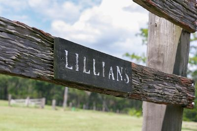 Gallery - Lillians of Lovedale