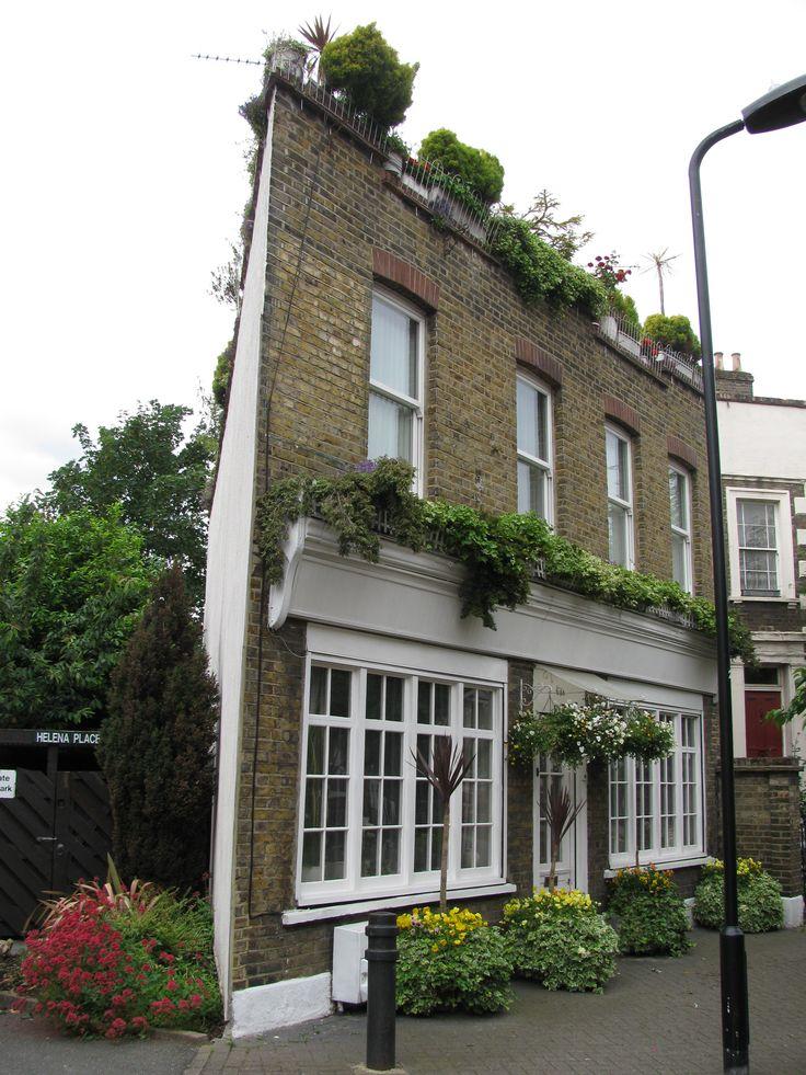 Roof terrace Hackney, London, my birthplace