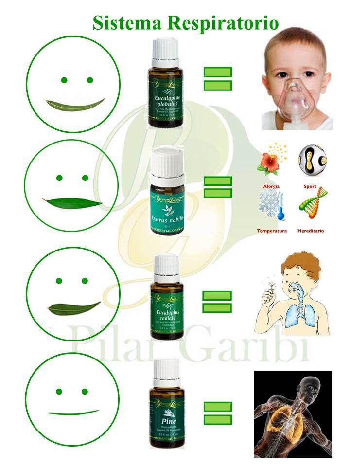 Con el frío llega la tos, la gripe! Apóyate con estos aceites, úsalos con toda tu familia. ylacuaroma@gmail.com