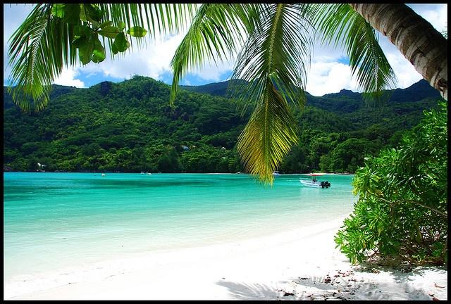Port Lornay, Mahe, Seychelles.   I feel like I would fit in well here.