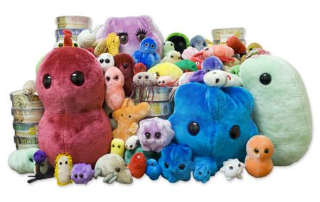 Giant Microbes were founded in 2002, to bring you a grand assortment of fun and educational products! If you are looking for a great gift for a student or teacher this company has something for you. Giant Microbes are, literally stuffed animals that are a million times bigger than their actual size.