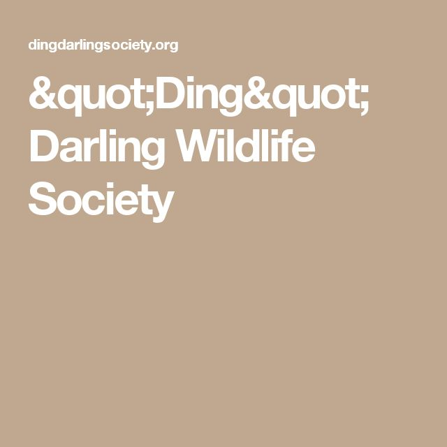 """Ding"" Darling Wildlife Society"