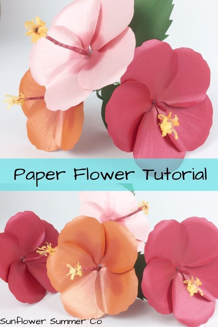 Free Hibiscus Flower Template With Images Paper Flowers
