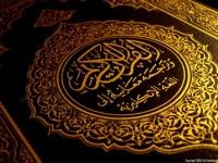 Holy Quran Translation in Sindhi Read and Download