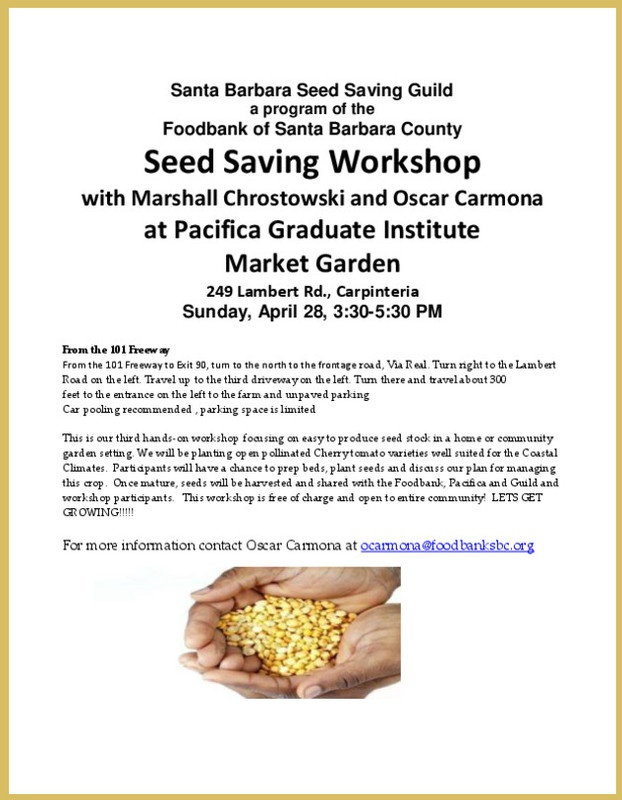 Carpinteria, CA Come to the third seed saving workshop at Pacifica Graduate Institute Market Garden with Master Seed Saver Marshall Chrostowski and Oscar Carmona.  We will be transplanting two heirloom varieties … Click flyer for more >>