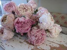 gedroogde rozen decoratie - rozen zijn een dankbaar object om te drogen en te decoreren