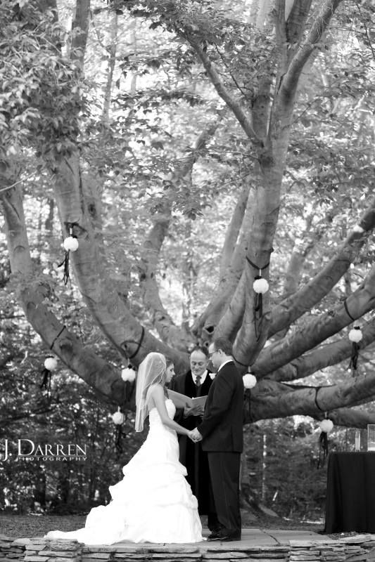 14 best wedding venues images on pinterest wedding venues barn outdoor wedding ceremony under the sweetheart tree at magnolia manor greensboro nc wedding venue junglespirit Image collections