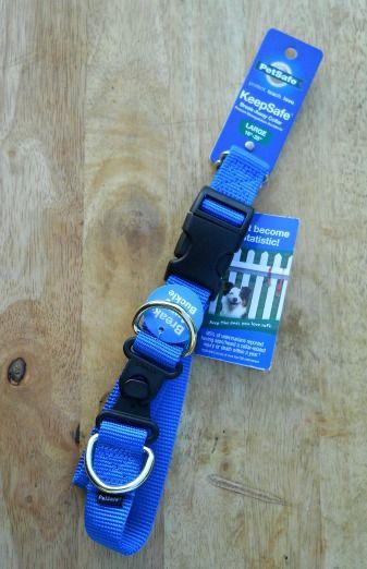 PetSafe Collar Safety Awareness Week