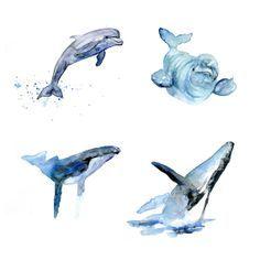 Set van 4 Kunst Prints van Walvisachtigen. Aquarel door Zendrawing, €53.00