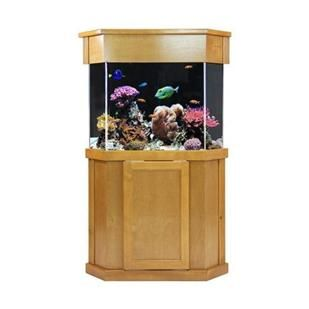 Acrylic aquariums, fish tanks, in wall aquarium, aquarium stand, acrylic tank, stand and canopy, tanks used for marine, freshwater, coral reef, and tropical fish tanks