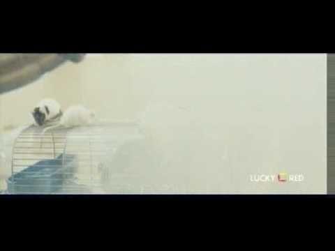 Thank you for smoking - Trailer Italiano
