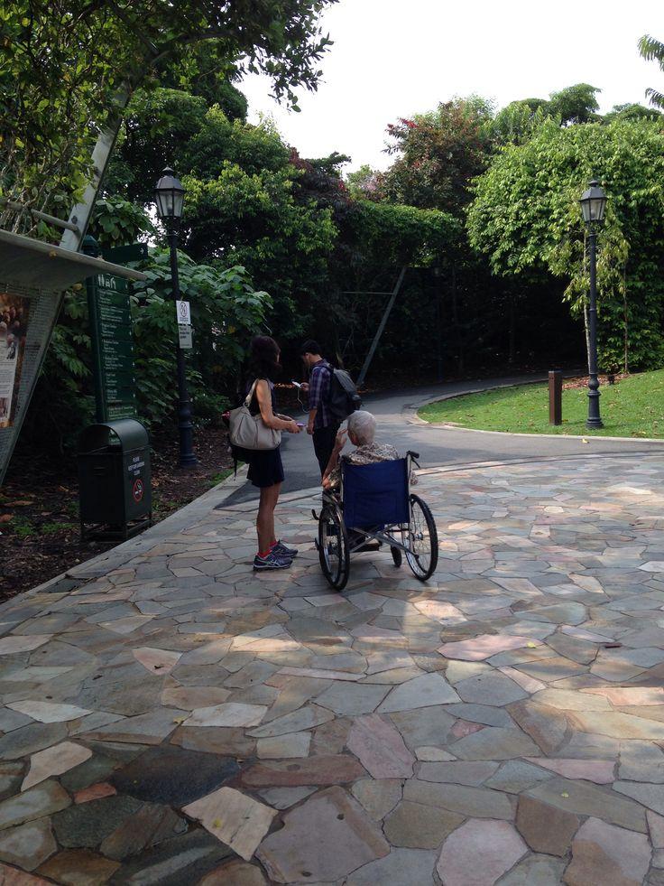 Old people in garden