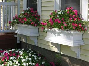 window boxes full of flowersDecor Home, Windowboxes, Home Exterior, Windows Boxes, Windows Flower Boxes, Curb Appeal, Planters Boxes, Gardens Tips, Window Boxes