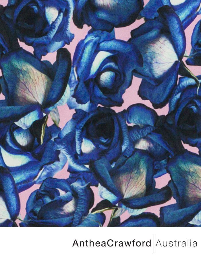 Floral Digital Print AW14: Radiance