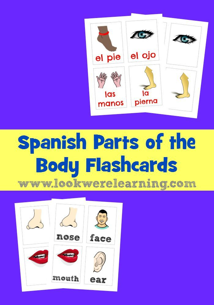 These Spanish parts of the body flashcards make it easy to teach kids how to say body part names in Spanish!
