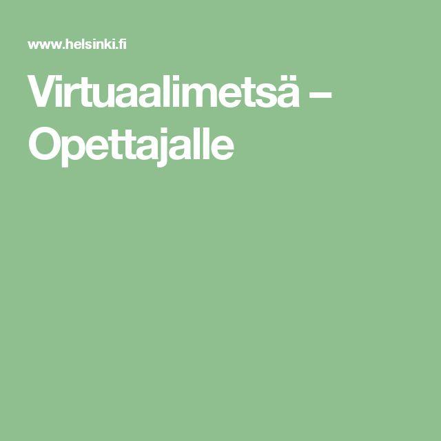 Virtuaalimetsä – Opettajalle