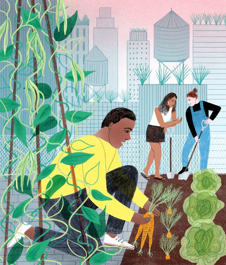 ©Eleanor Taylor - Heart Agency - Johns Hopkins, Urban Farming