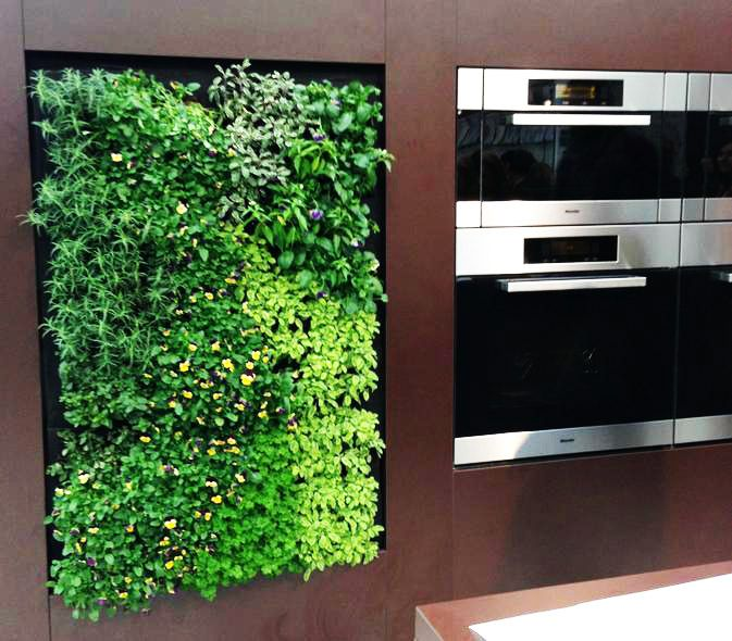 This is fantastic! Grow your own herbs and spices right in your kitchen with the EcoWall!