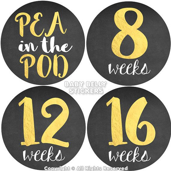 Pregnancy Stickers Maternity Stickers Weekly by BabyBellyStickers