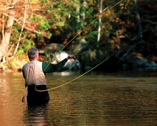 Best 25 fly fishing ideas on pinterest fly fishing for Fly fishing 101
