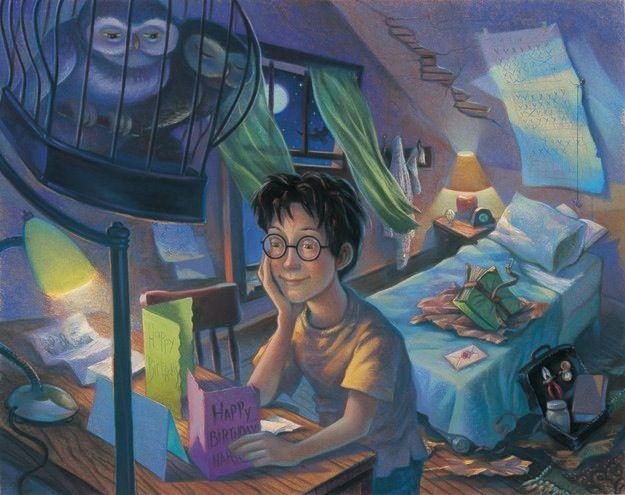 O Harry Potter foi sem dúvida um dos livros mais esperados do mundo. A cada lançamento, a série do bruxinho levou milhares de pessoas para as filas, comprand