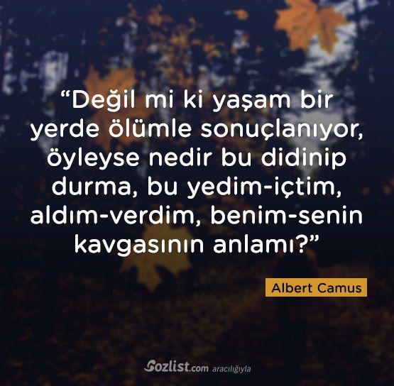 Değil mi ki yaşam bir yerde ölümle sonuçlanıyor, öyleyse nedir bu didinip durma  Albert Camus