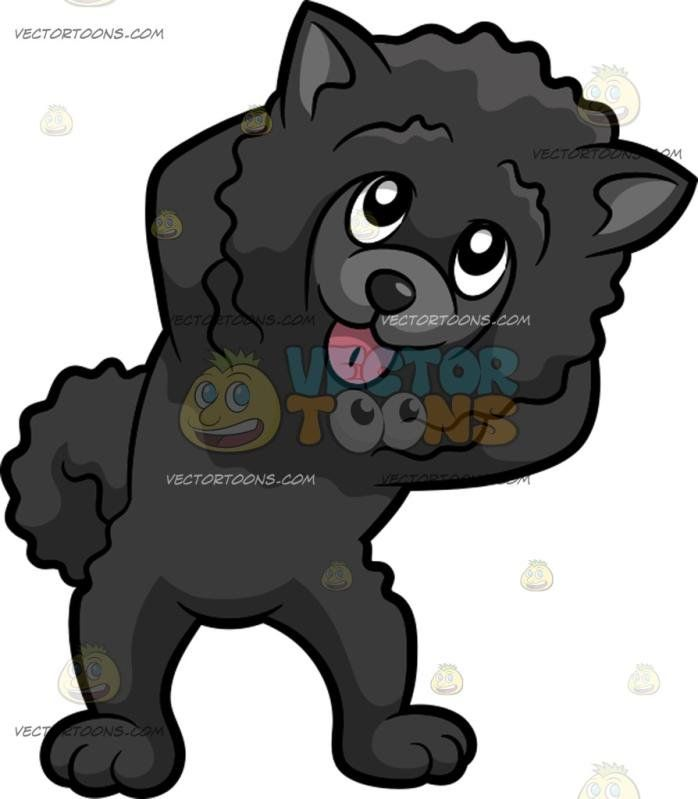A Cute Dancing Dog:  A dog with fluffy black fur erect ears parts its lips to show a pink tongue as it leans to the left while dancing