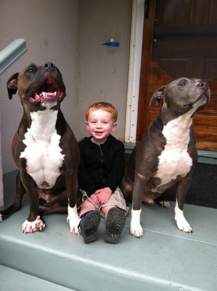 babysitting wanted