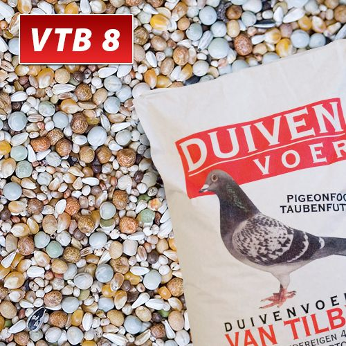 VTB_8