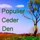 Drie bomen, de Populier, Ceder en de Den die in de Keltische astrologie bepaalde boomtypes oftewel symbolische betekenissen representeren, worden hier...