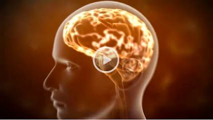 Brain Enhancement Supplement - Google+  This video explains how our brain connections can become weak with age and how we can defend against the effects of aging in our mind with a natural mixture of bioactive molecules isolated from coffee called NeriumEHT®. http://brainenhancementsupplement.com/eht-launch-video-mind/