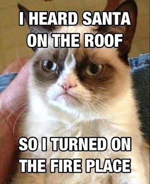 Grumpy Cat Humor | I heard Santa on the roof, so I turned on the fireplace! Originally shared by Melanie Jones on Google+