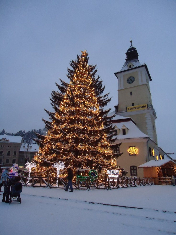 The Christmas tree in the center of Brasov, Romania