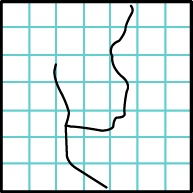 """Code: LE-11 LEGAULT STREAM / RUISSEAU LEGAULT  Location / Lieu : Mont-Laurier, Antoine-Labelle, Québec  Coordinates / Coordonnées : N 46° 34' 10"""" W 75° 29' 05"""""""