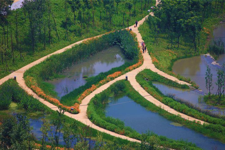 Galería de Parque del humedal Minghu / Turenscape - 5