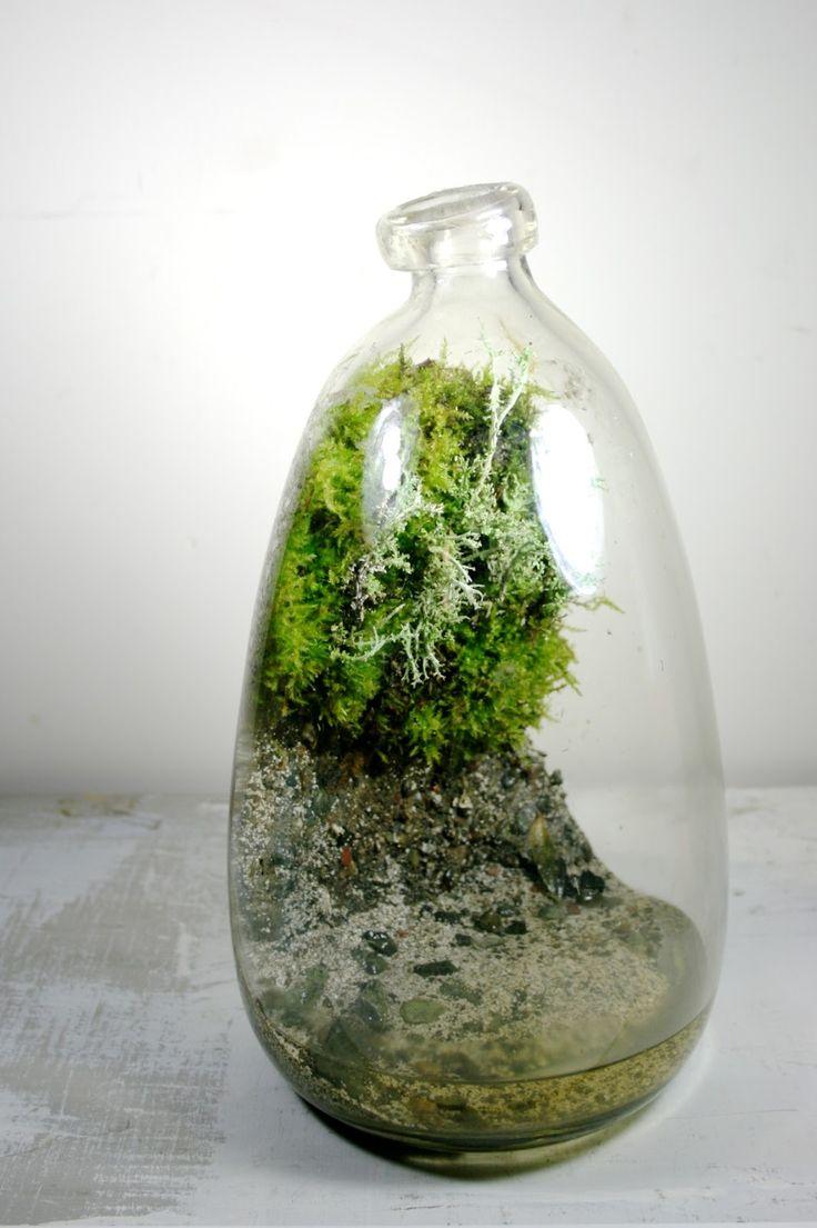 Best All Things Terrariums Images On Pinterest Plants - Amazing diy non living terrarium