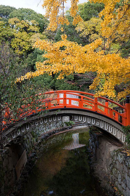 Autumn in Shimogamo Shrine, Kyoto, Japan
