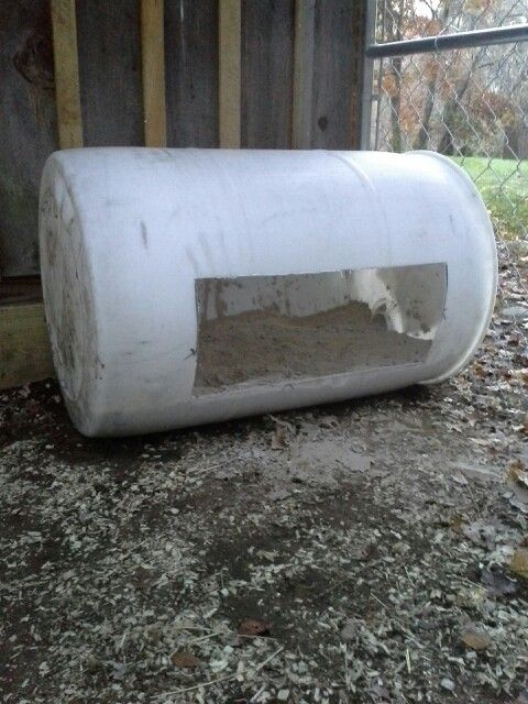 Outdoor covered chickens dust bath