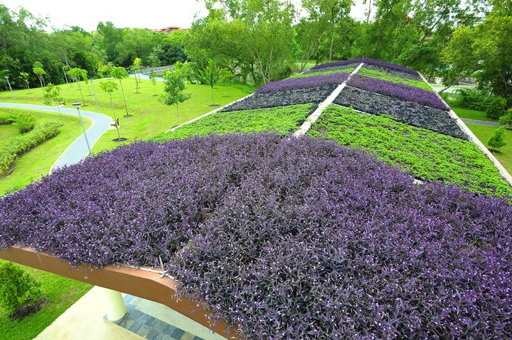 Elmich manufactures a range of products to create effective green roof and vertical green wall systems that provide multiple benefits such as reduced cooling loads, reduced storm water run-off, and improved indoor air quality