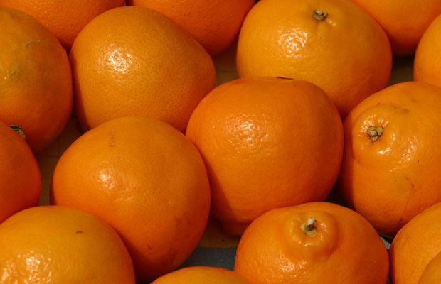 Photos: 13 foods to beat the winter blahs