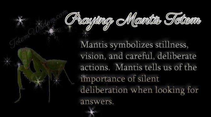 Praying Mantis Totem