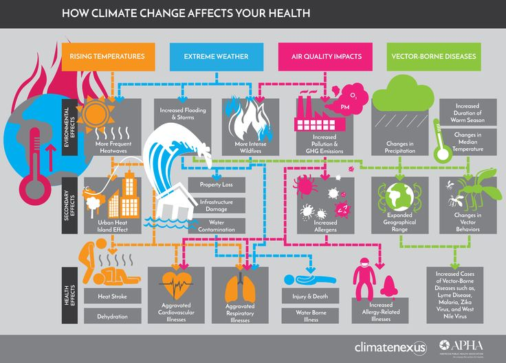 Four Infographics That Show How Climate Change Is Affecting Your Health |  From carbon to coffin.
