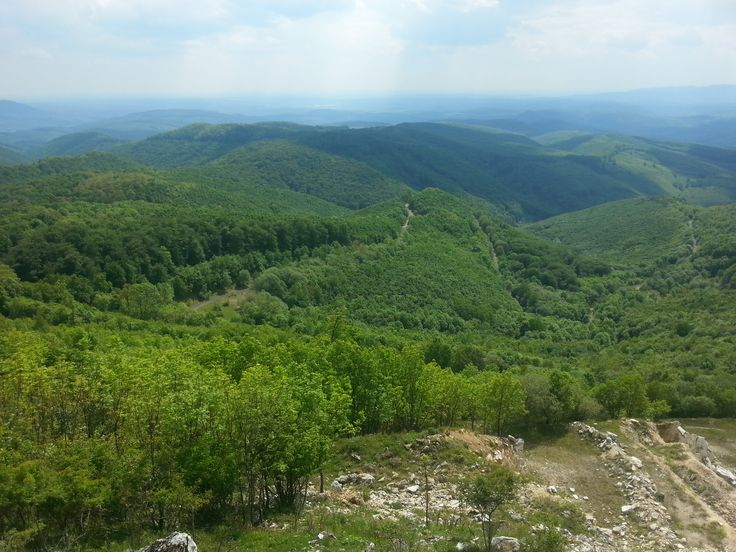 Bükk-hegység