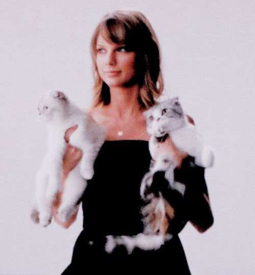 Taylor Swift with her cats Olivia and Meredith