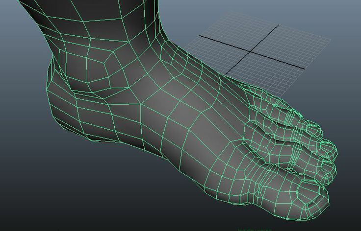 female foot topology - Google 検索